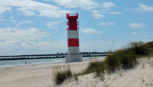 Lernen mit Herz und Hand auf Helgoland – Meeresbiologische Studienfahrt